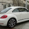 beetle trasera