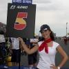 Pit Babe Francia F1