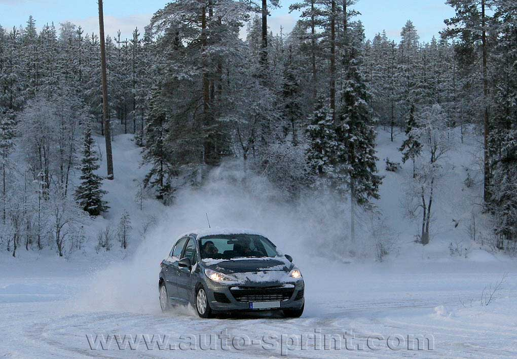 Peugeot 207 en el lago helado