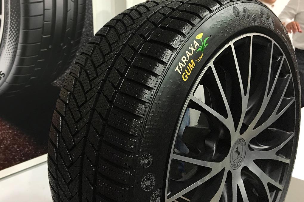 Neumáticos fabricados con Taraxagum