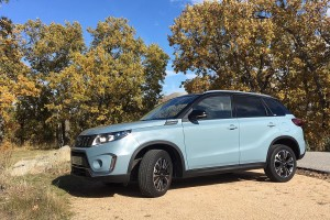 Suzuki Virara 2018